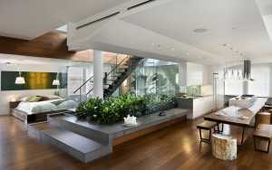 apartment-interior-design-modern-kitchen-living-home-fresh-light-minimalistic-plants (1)