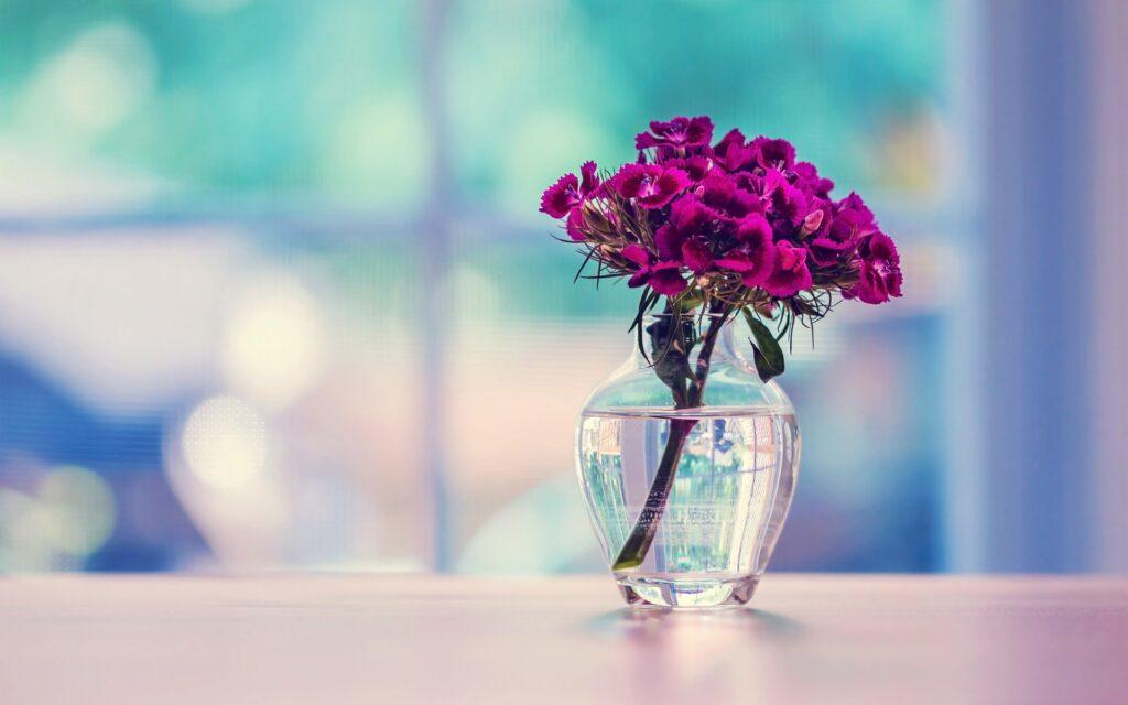 обои для рабочего стола бесплатно широкоформатные цветы № 318809 бесплатно
