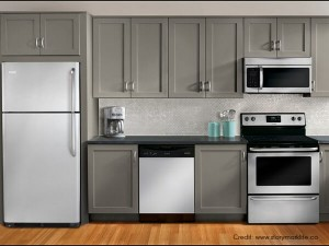 Partially-Integrated-Kitchen-Appliances - Luxus India