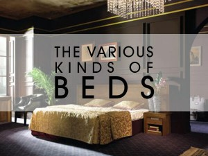 Various-Kinds-of-Beds